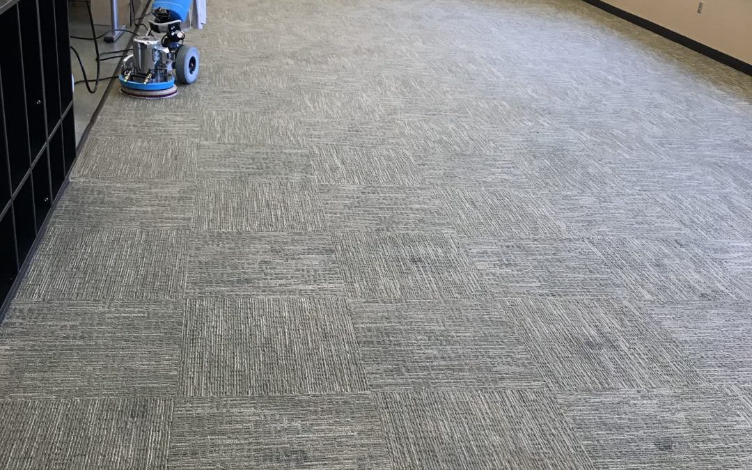 Elementary School Carpet Cleaning
